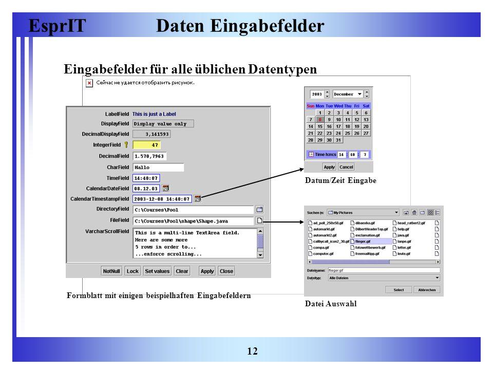 Daten Eingabefelder Eingabefelder für alle üblichen Datentypen