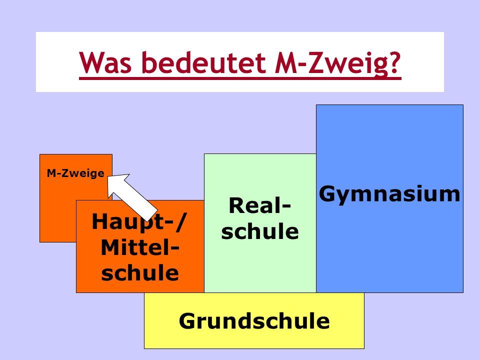 Was bedeutet M-Zweig Gymnasium Real- schule Haupt-/ Mittel- schule