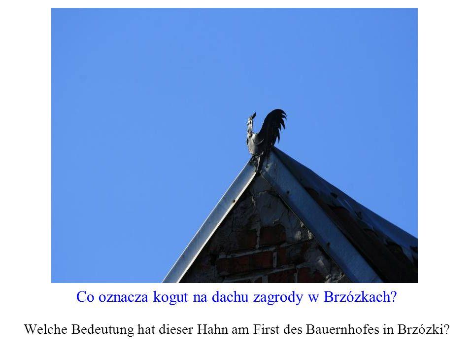 Co oznacza kogut na dachu zagrody w Brzózkach