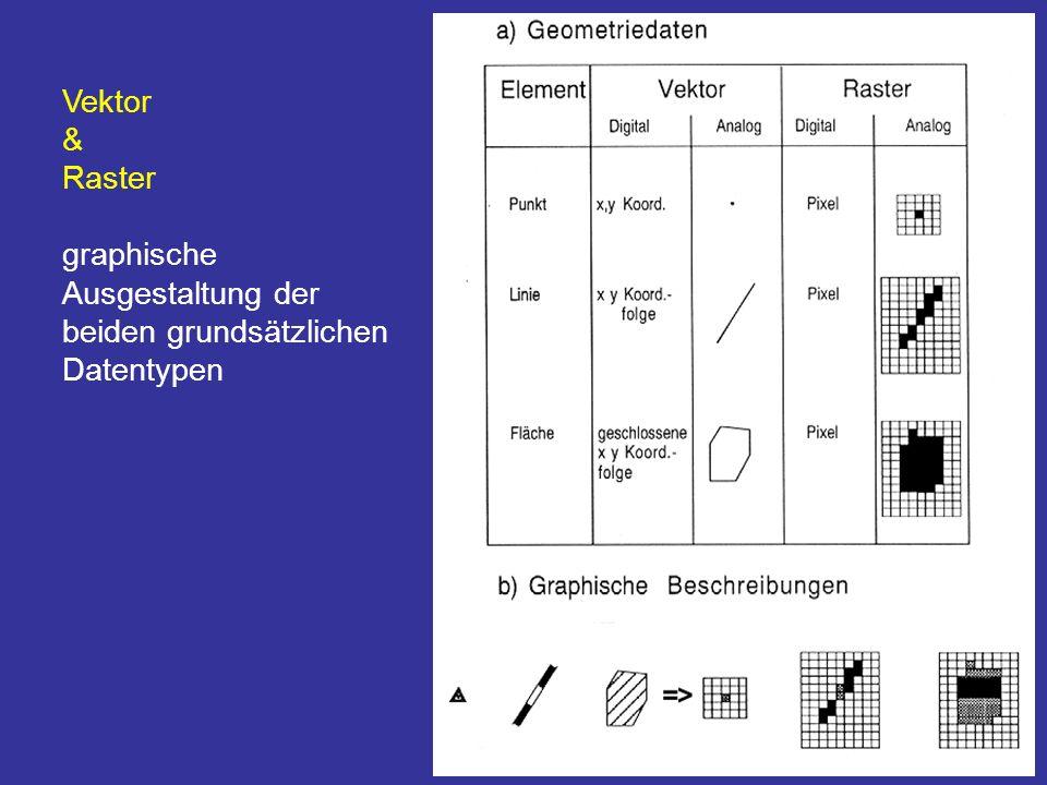 Vektor & Raster graphische Ausgestaltung der beiden grundsätzlichen Datentypen
