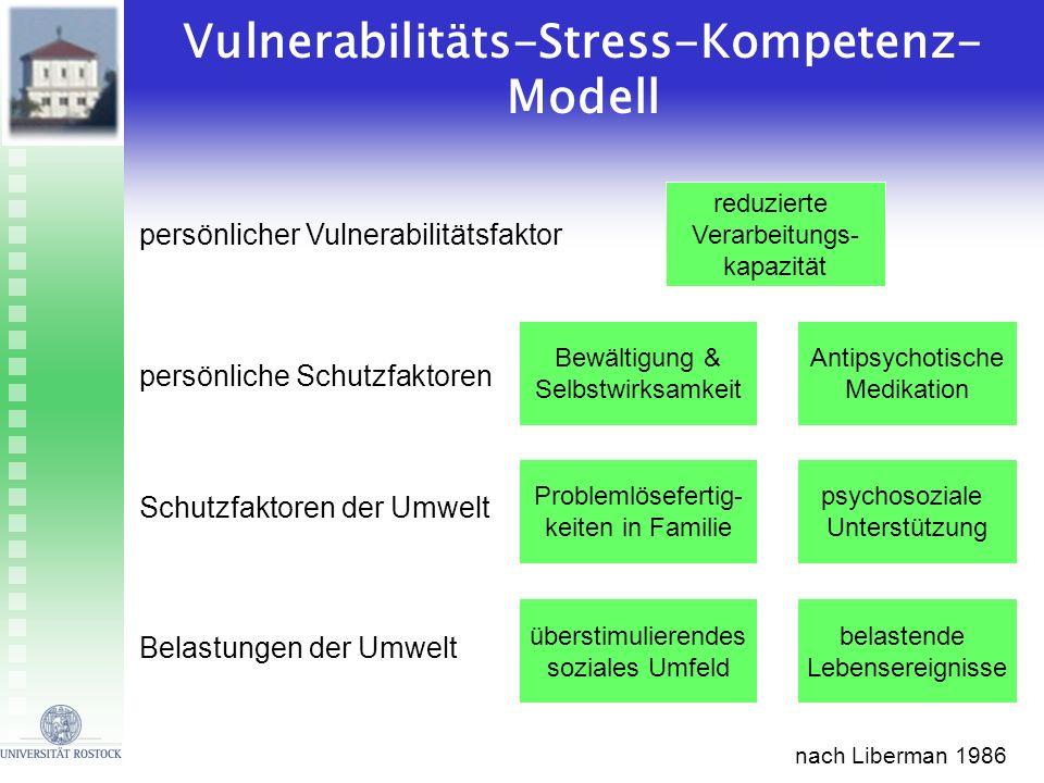 Vulnerabilitäts-Stress-Kompetenz-Modell