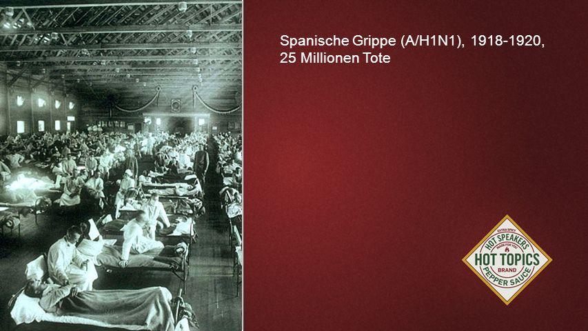 FOTOBACKGROUND Spanische Grippe (A/H1N1), 1918-1920, 25 Millionen Tote