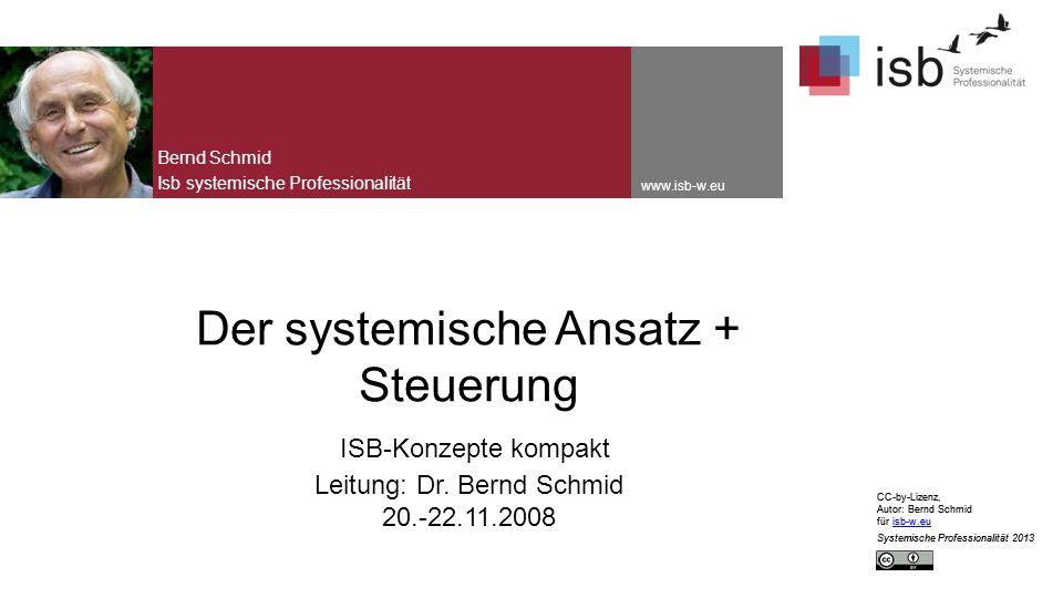 Bernd Schmid Isb systemische Professionalität