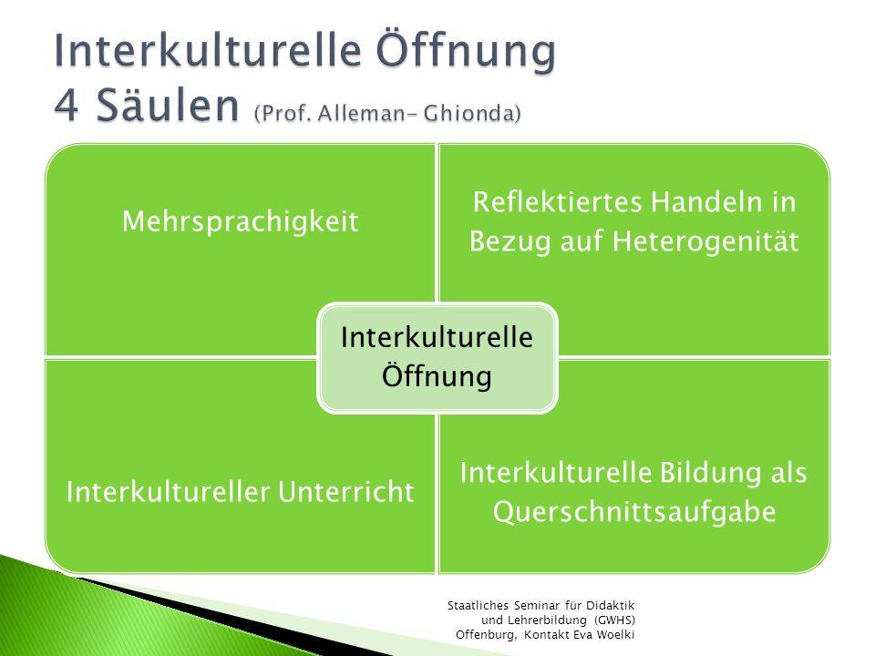 Interkulturelle Öffnung 4 Säulen (Prof. Alleman- Ghionda)