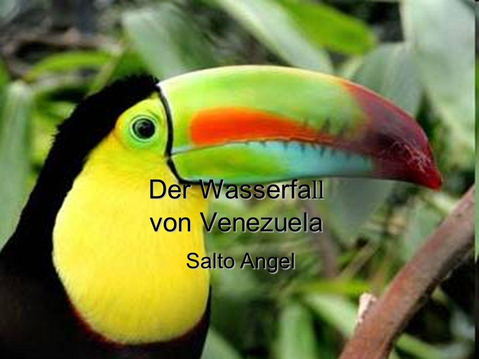 Der Wasserfall von Venezuela Salto Angel