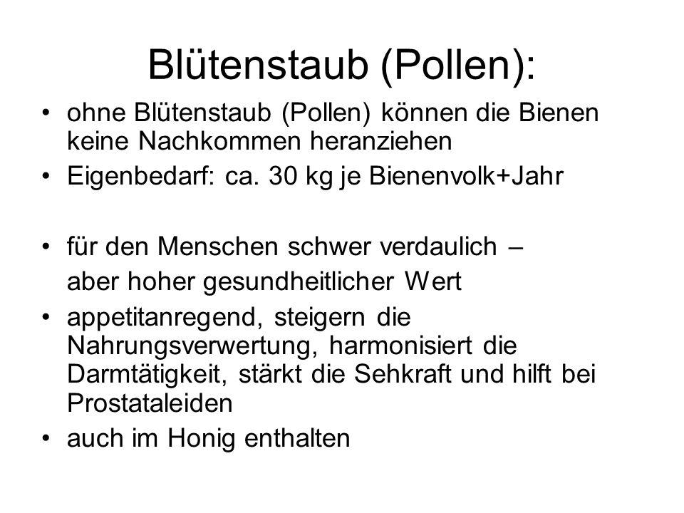 Blütenstaub (Pollen):