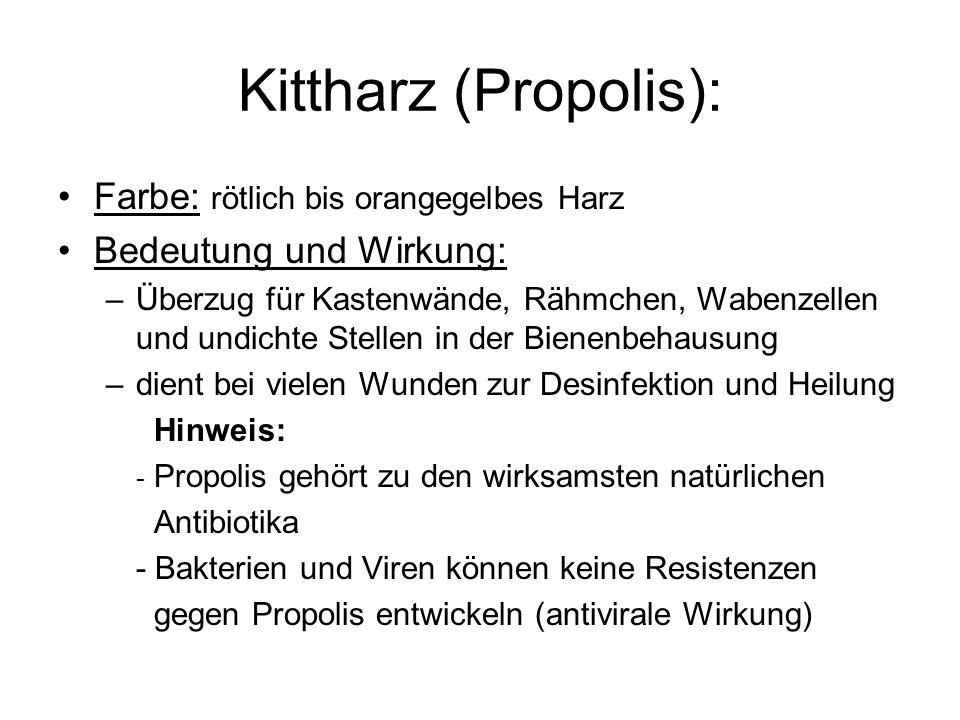 Kittharz (Propolis): Farbe: rötlich bis orangegelbes Harz