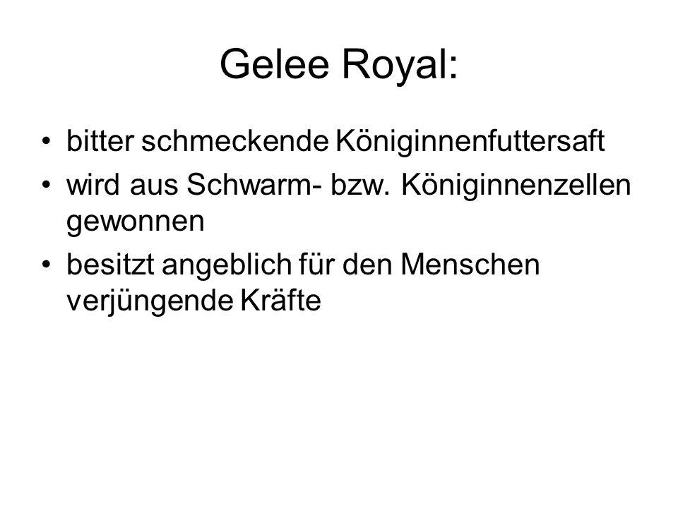 Gelee Royal: bitter schmeckende Königinnenfuttersaft