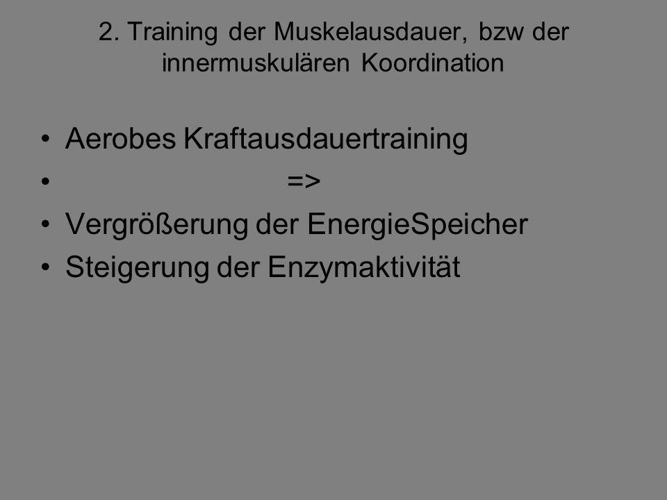 2. Training der Muskelausdauer, bzw der innermuskulären Koordination