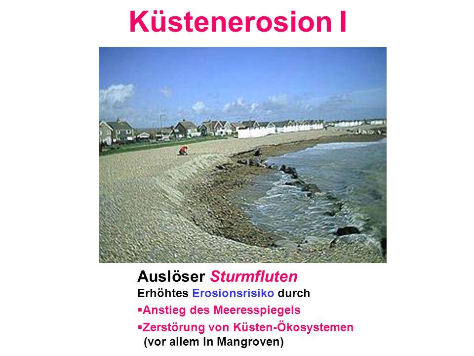 Küstenerosion I Auslöser Sturmfluten Erhöhtes Erosionsrisiko durch