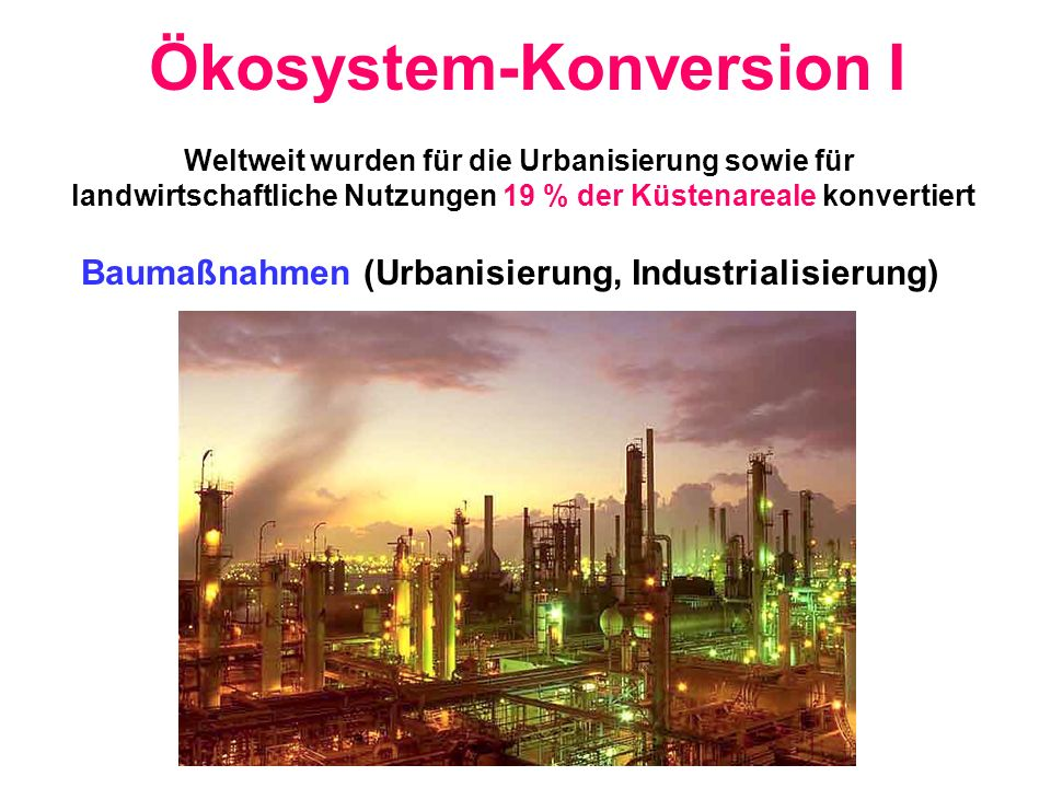 Ökosystem-Konversion I