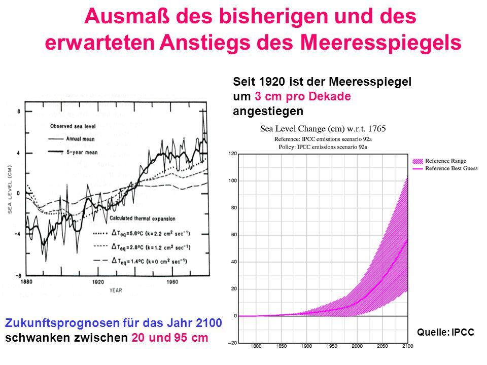 Ausmaß des bisherigen und des erwarteten Anstiegs des Meeresspiegels