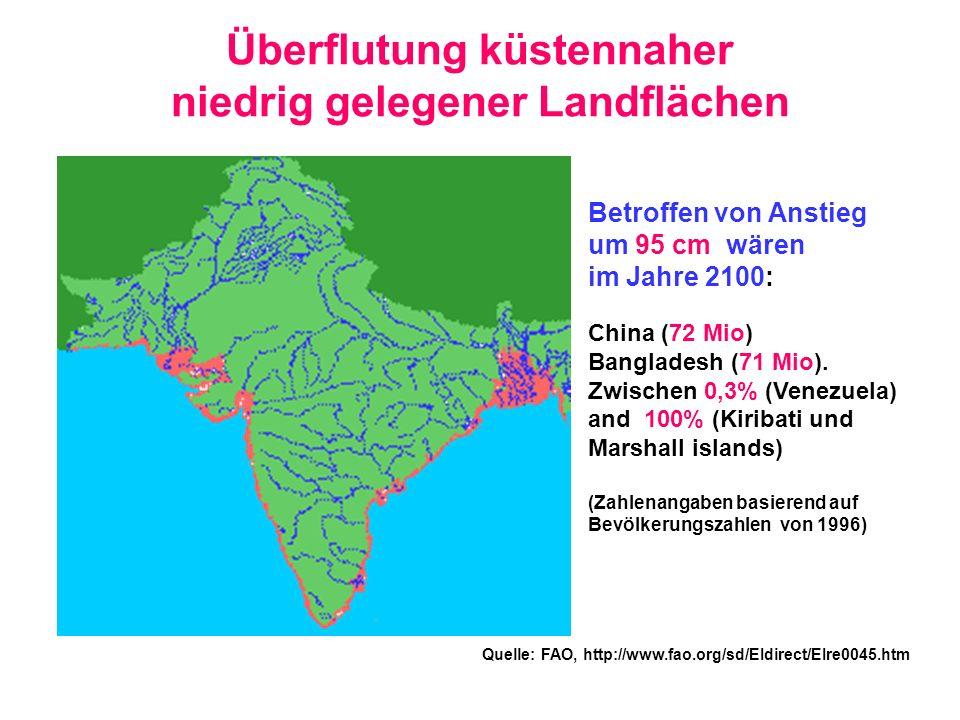 Überflutung küstennaher niedrig gelegener Landflächen