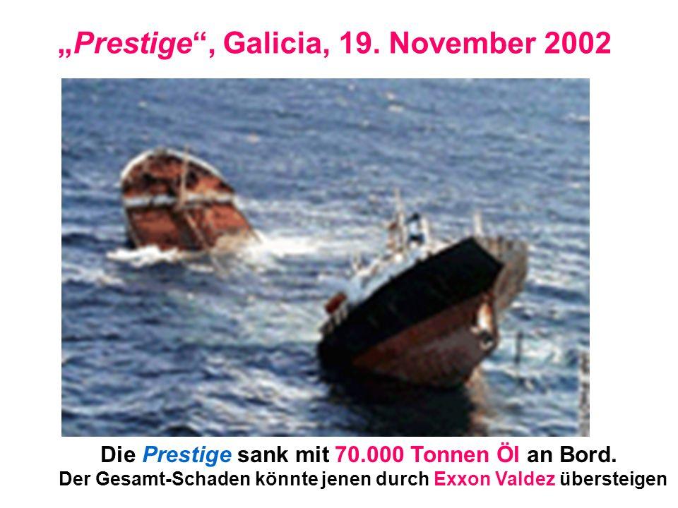 """""""Prestige , Galicia, 19. November 2002"""