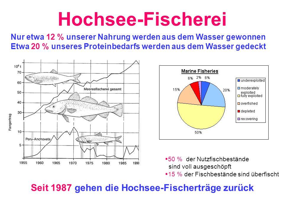 Hochsee-Fischerei Seit 1987 gehen die Hochsee-Fischerträge zurück