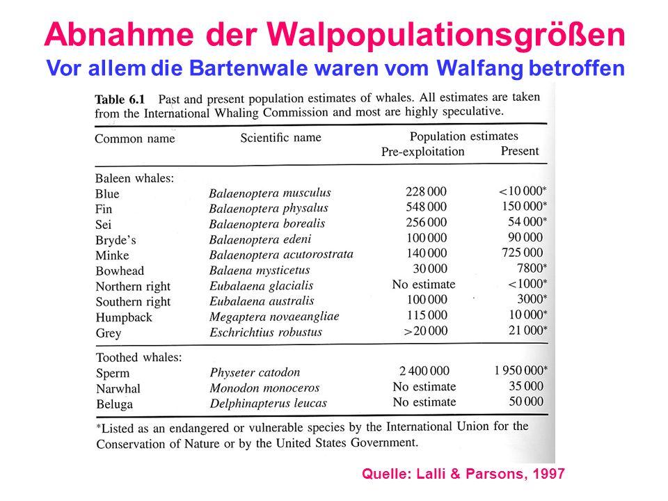 Abnahme der Walpopulationsgrößen
