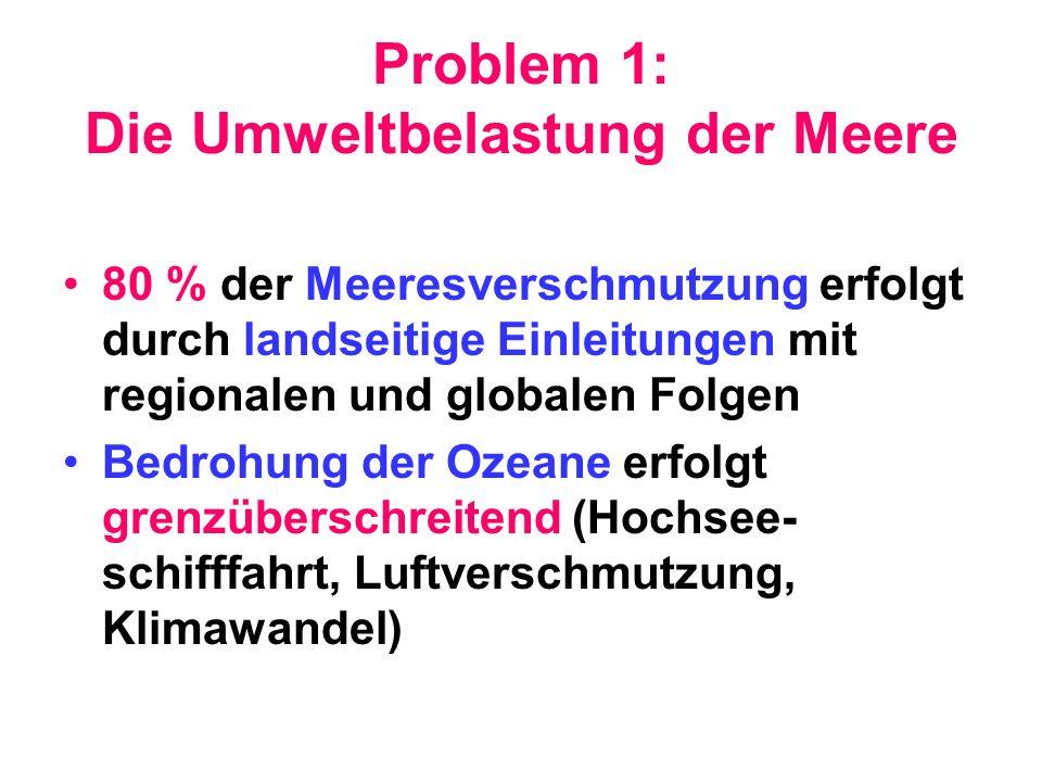 Problem 1: Die Umweltbelastung der Meere