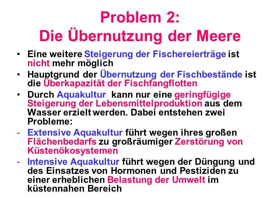 Problem 2: Die Übernutzung der Meere
