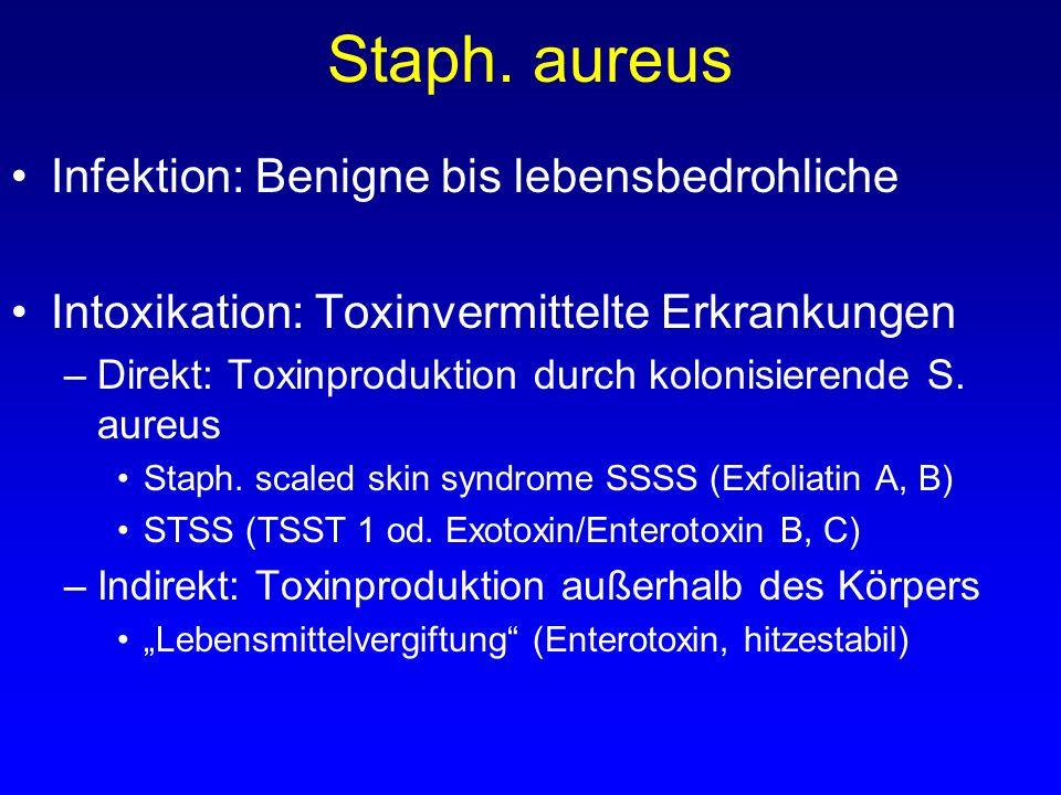 Staph. aureus Infektion: Benigne bis lebensbedrohliche