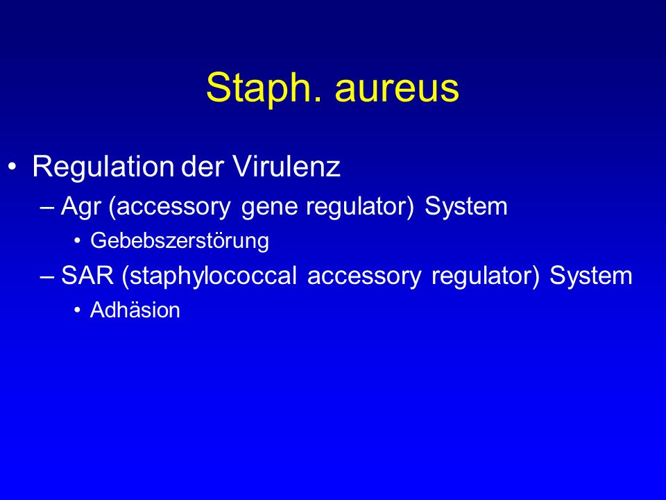 Staph. aureus Regulation der Virulenz