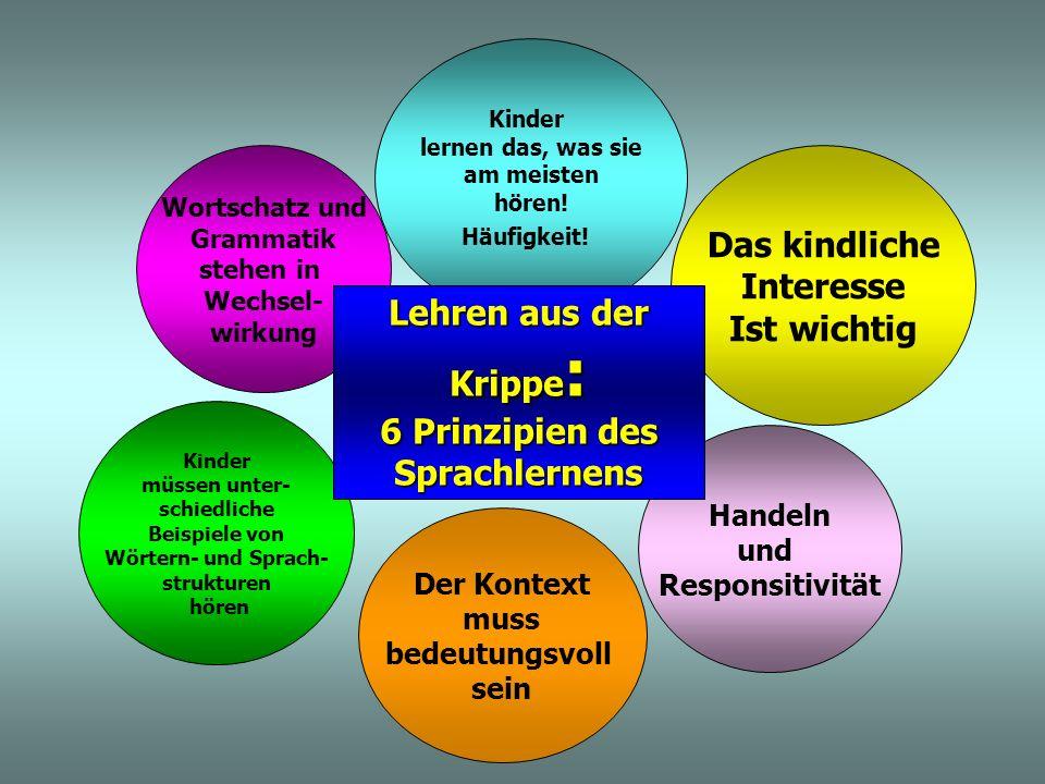 6 Prinzipien des Sprachlernens