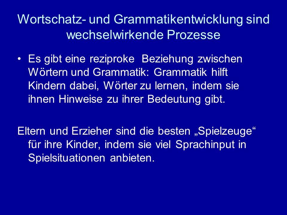 Wortschatz- und Grammatikentwicklung sind wechselwirkende Prozesse