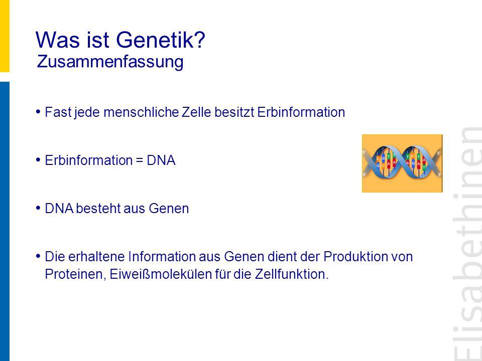 Was ist Genetik Zusammenfassung