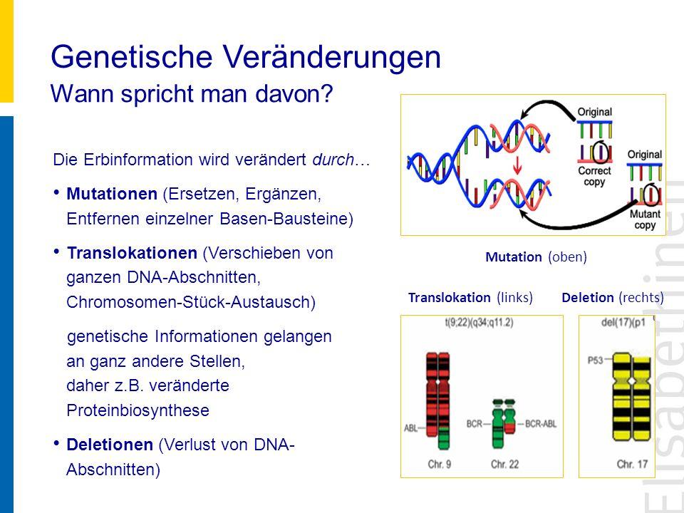 Genetische Veränderungen