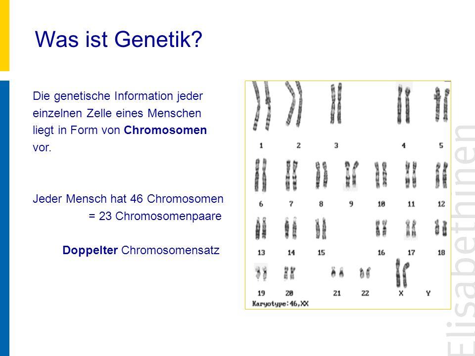 Was ist Genetik Die genetische Information jeder einzelnen Zelle eines Menschen liegt in Form von Chromosomen vor.