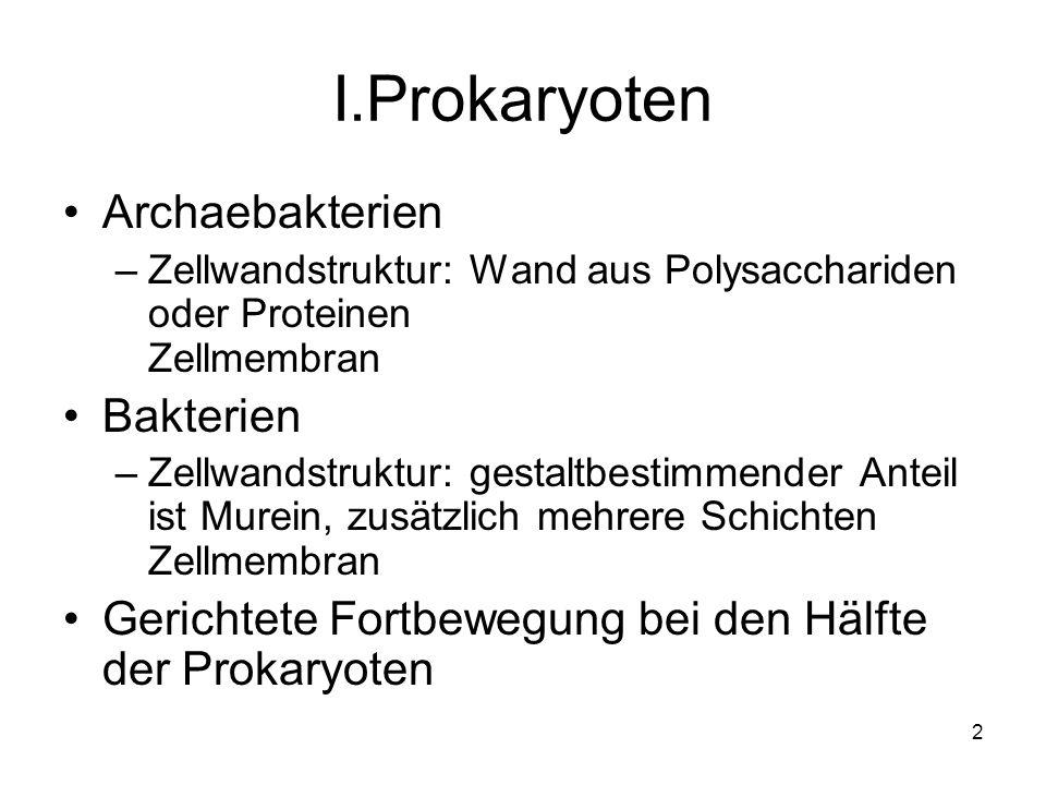I.Prokaryoten Archaebakterien Bakterien