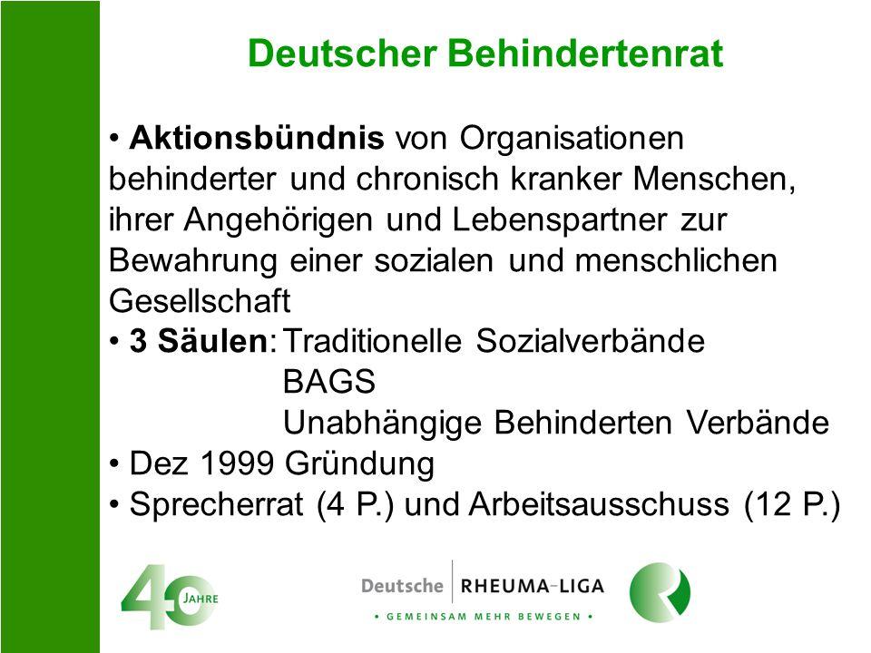 Deutscher Behindertenrat