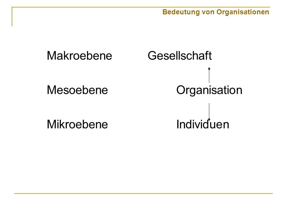 Makroebene Gesellschaft Mesoebene Organisation Mikroebene Individuen