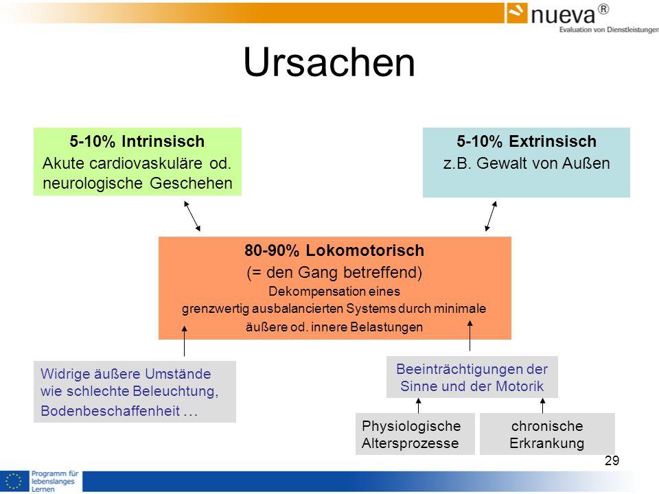 Ursachen 80-90% Lokomotorisch (= den Gang betreffend)