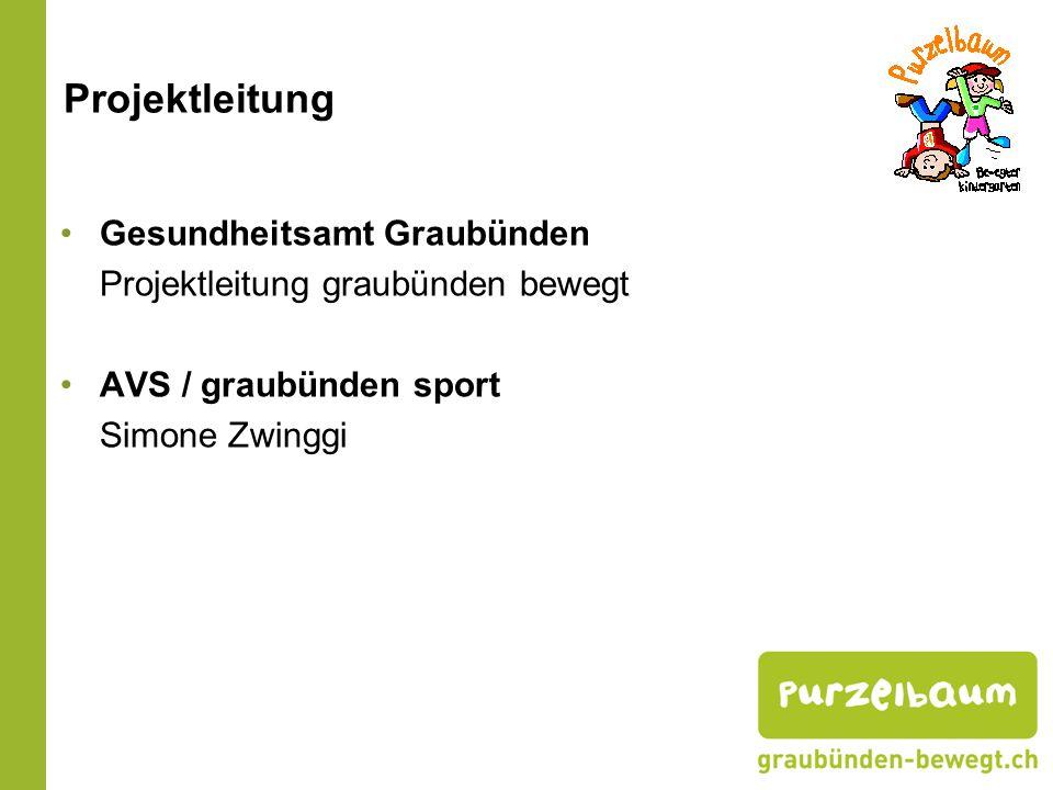 Projektleitung Gesundheitsamt Graubünden