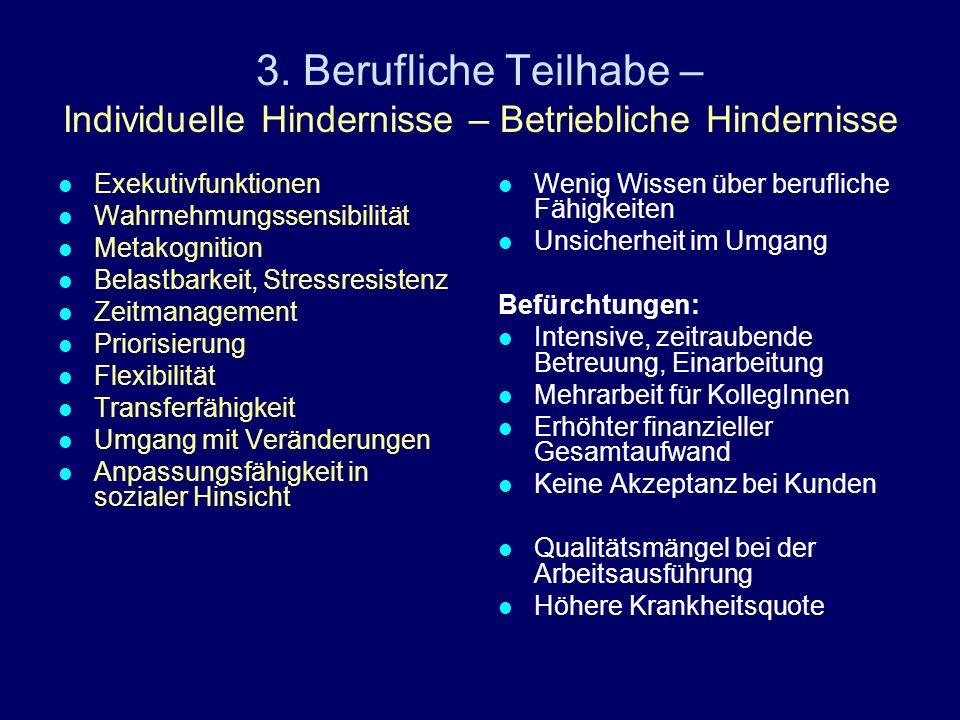 3. Berufliche Teilhabe – Individuelle Hindernisse – Betriebliche Hindernisse
