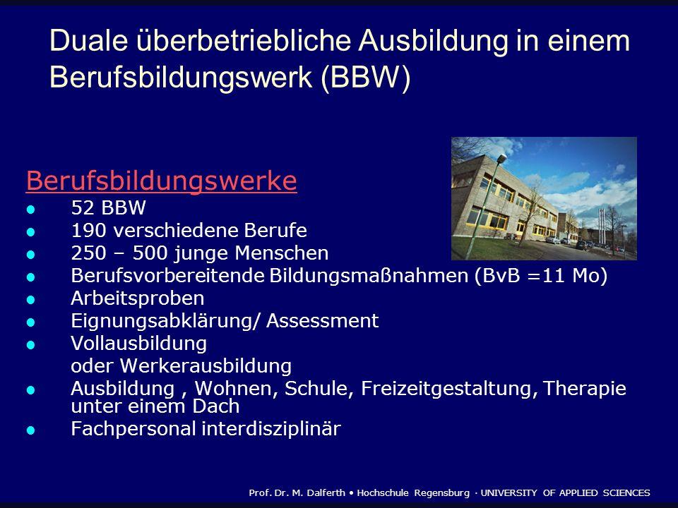 Duale überbetriebliche Ausbildung in einem Berufsbildungswerk (BBW)