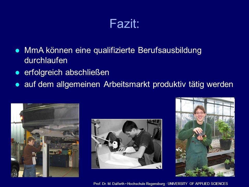 Fazit: MmA können eine qualifizierte Berufsausbildung durchlaufen