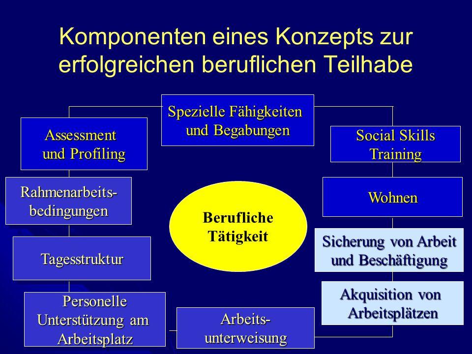 Komponenten eines Konzepts zur erfolgreichen beruflichen Teilhabe
