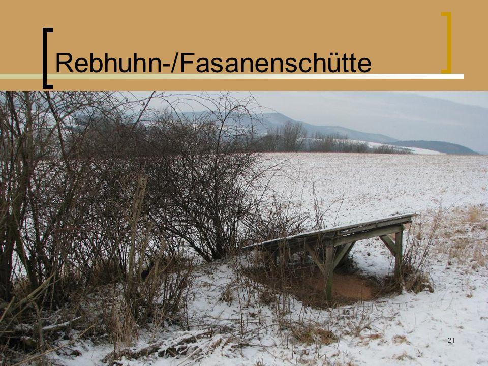 Rebhuhn-/Fasanenschütte