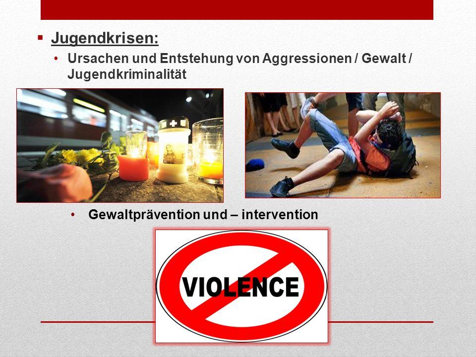 Jugendkrisen: Ursachen und Entstehung von Aggressionen / Gewalt / Jugendkriminalität.