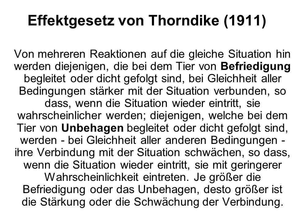 Effektgesetz von Thorndike (1911)