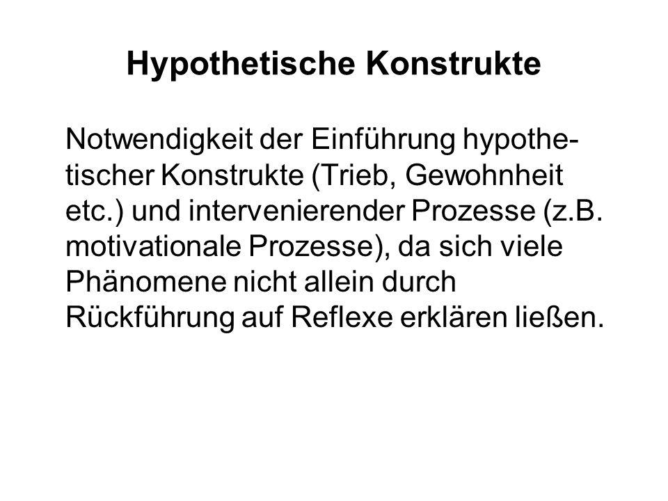 Hypothetische Konstrukte