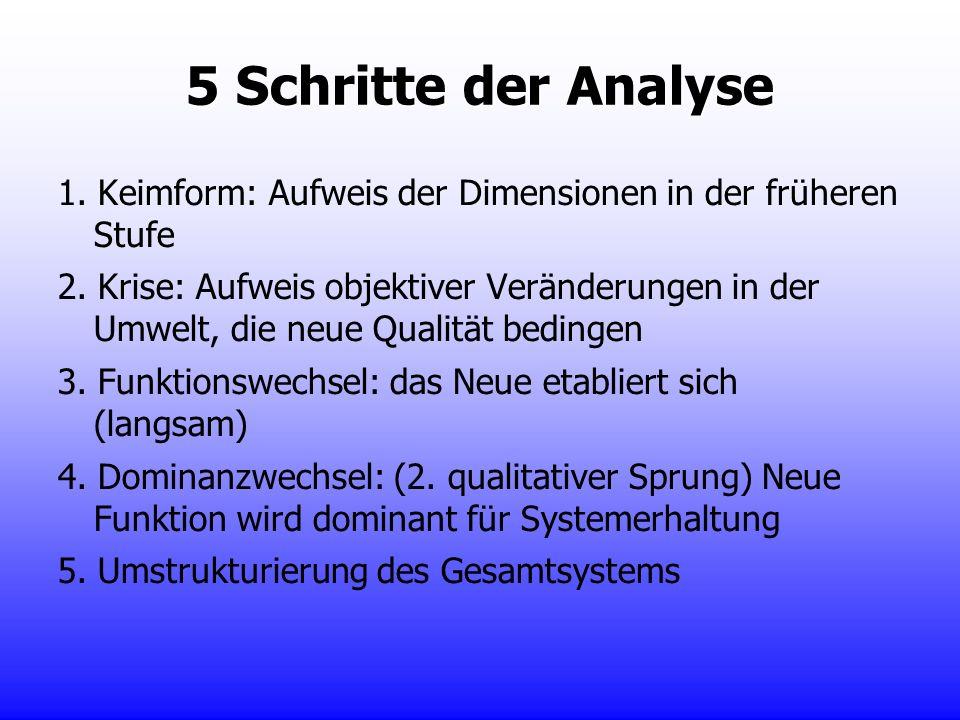 5 Schritte der Analyse 1. Keimform: Aufweis der Dimensionen in der früheren Stufe.