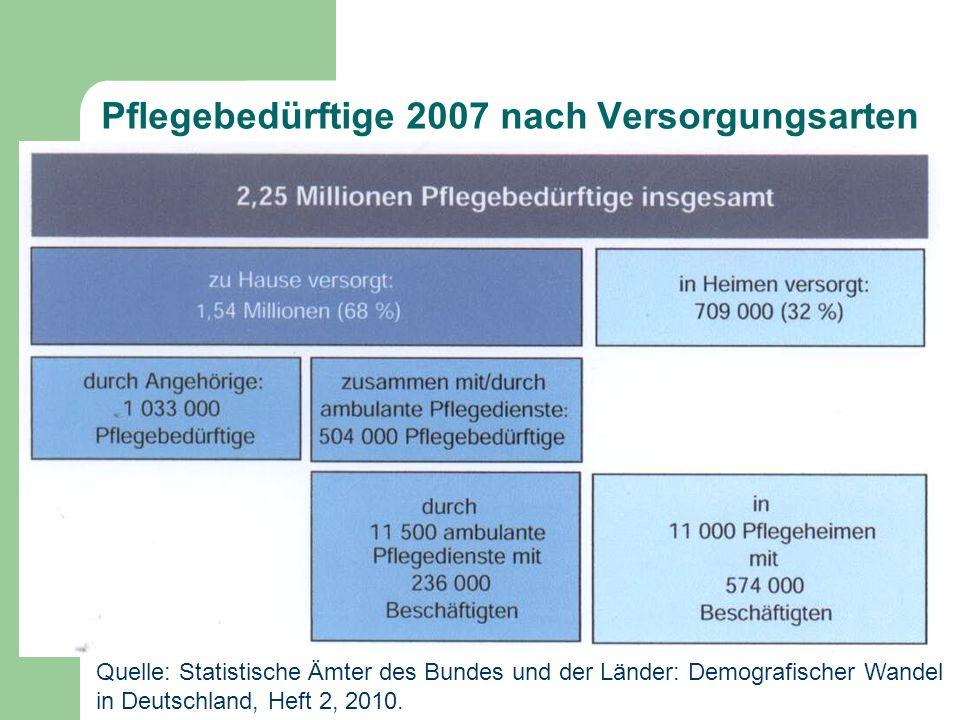 Pflegebedürftige 2007 nach Versorgungsarten