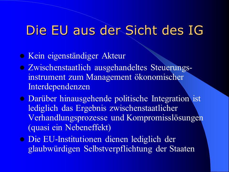 Die EU aus der Sicht des IG