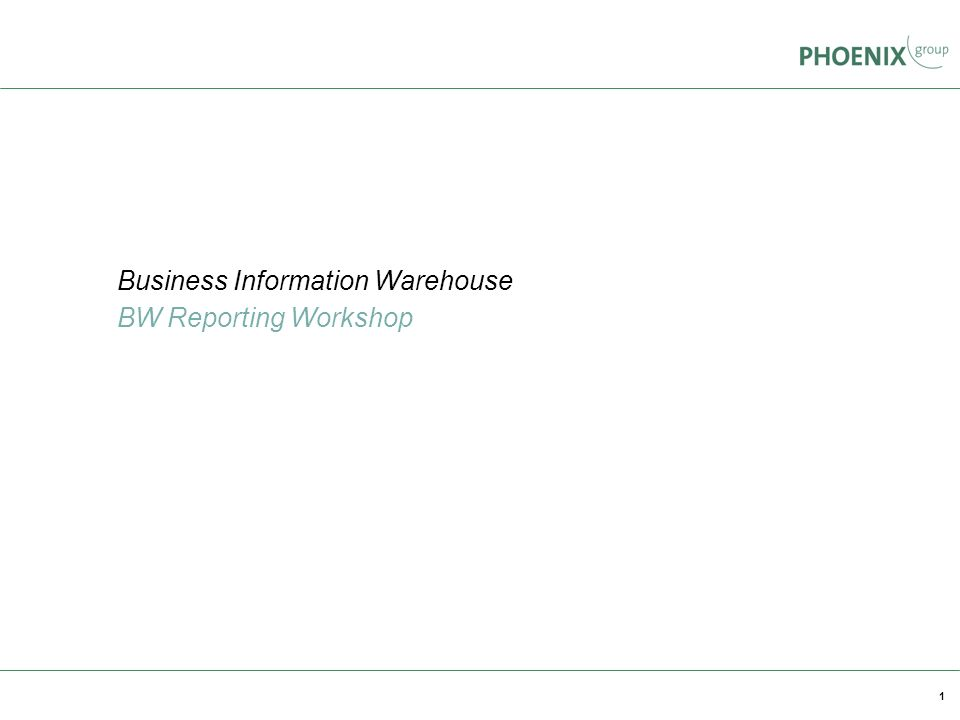 Business Information Warehouse BW Reporting Workshop