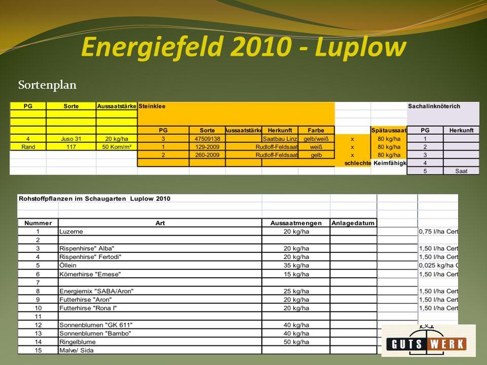 Energiefeld 2010 - Luplow Sortenplan