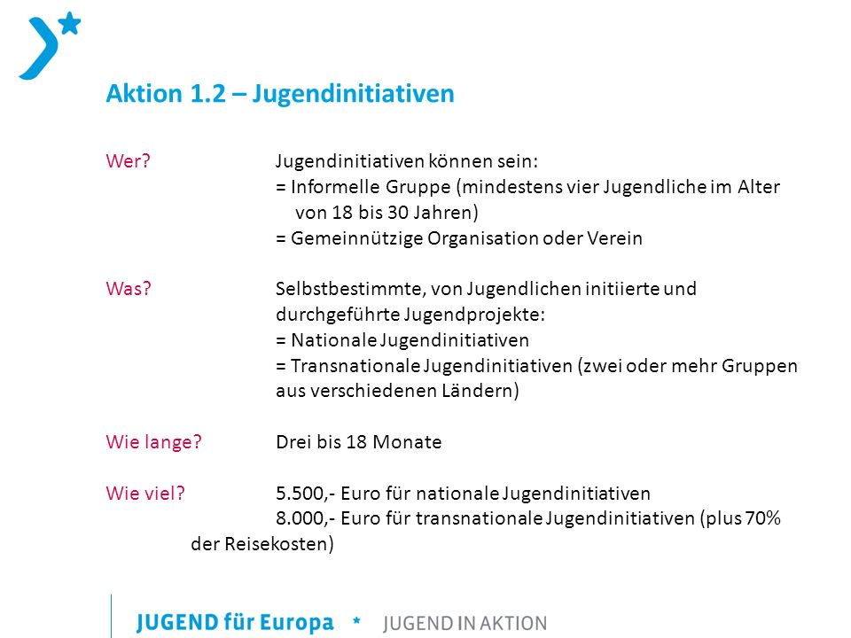 Aktion 1.2 – Jugendinitiativen