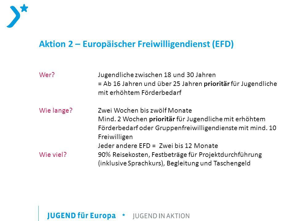 Aktion 2 – Europäischer Freiwilligendienst (EFD)
