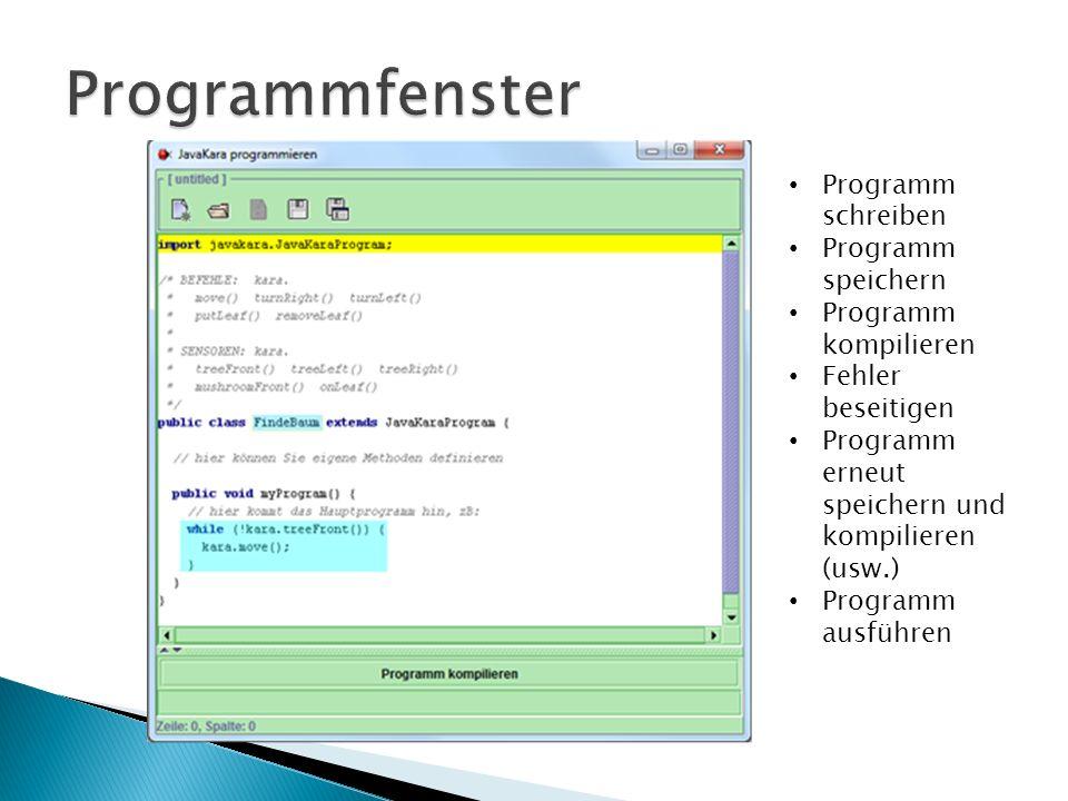 Programmfenster Programm schreiben Programm speichern